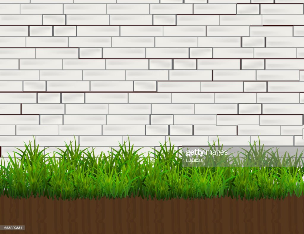 Green Grass Isolated on white Brick Wall  Background.