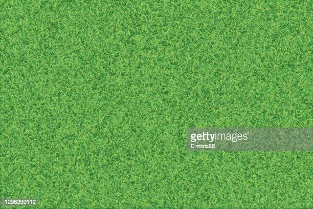 green grass realistic textured background. - grass stock illustrations