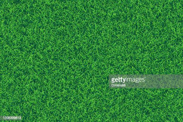 green grass realistic textured background. - full frame stock illustrations