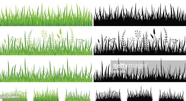 green grass - seamless pattern and silhouettes - illustration - blade of grass stock illustrations