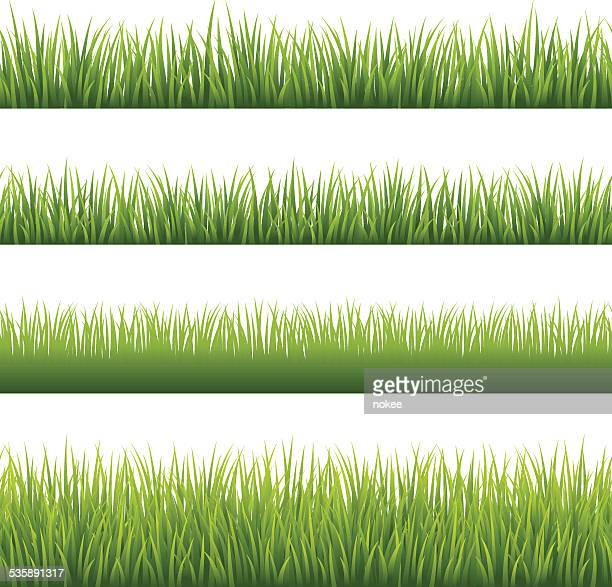 Green Grass - Seamless