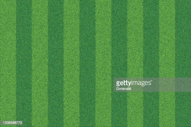 green grass striped realistic textured background - gras stock illustrations