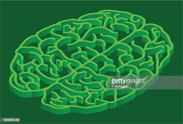 green labyrinth brain - hysteria stock illustrations