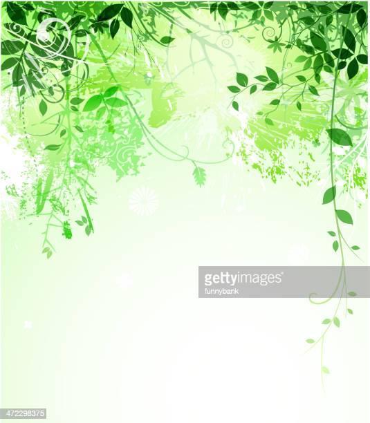 green leaf backround