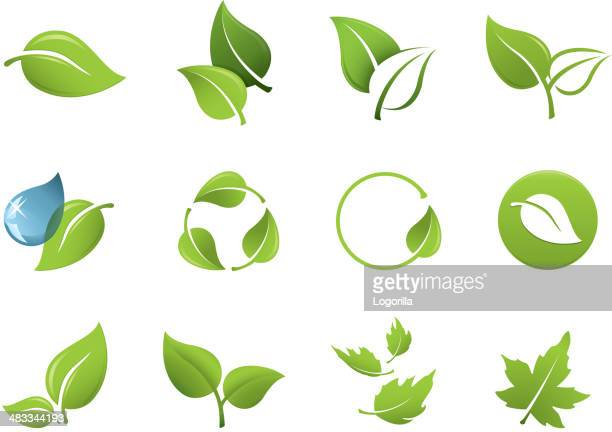 stockillustraties, clipart, cartoons en iconen met green leaf icons - leaving