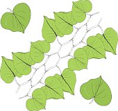Green leaf line icon vector illustration on white background