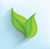 Green leaves in flat style