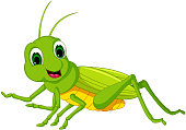 green locust cartoon