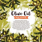 Green olive branch poster for oil label design