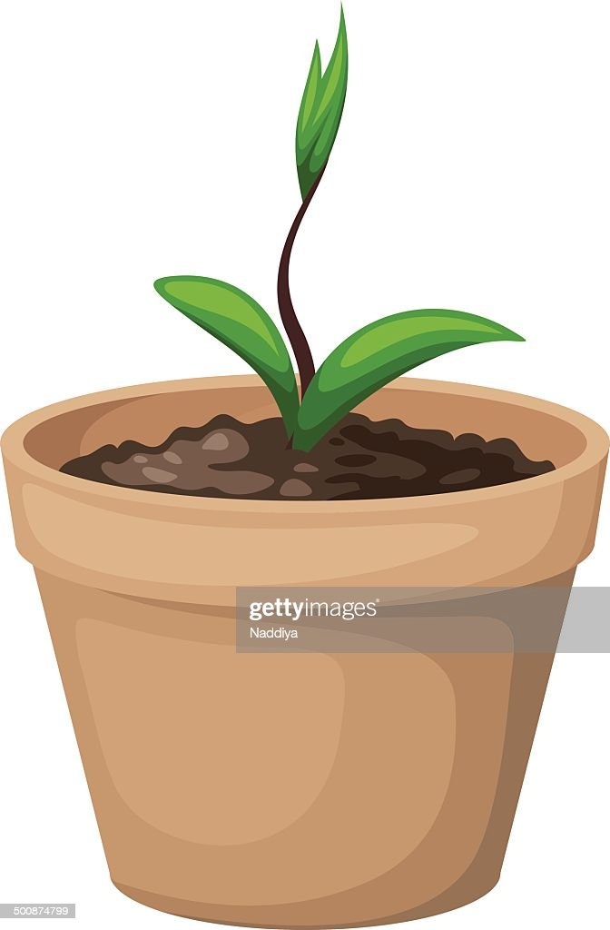 Green sprout in the clay flowerpot. Vector illustration.