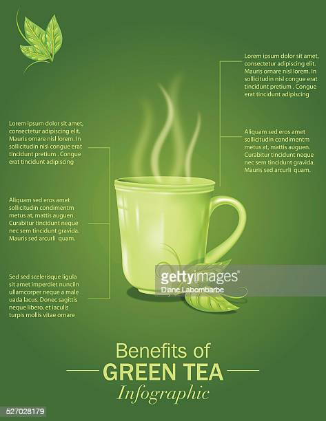 green tea infographic - steep stock illustrations, clip art, cartoons, & icons