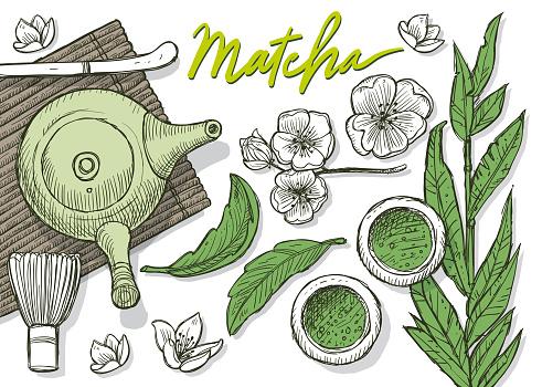 Green tea Matecha Japanese Tea Doodles - gettyimageskorea