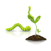 Green tea worm and small tree with soil isolated on white
