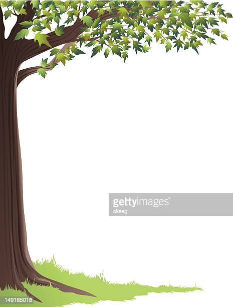 green tree frame - tree trunk stock illustrations, clip art, cartoons, & icons