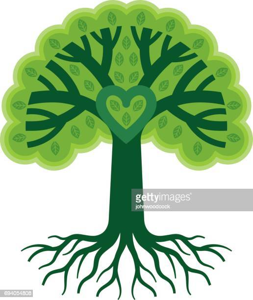 green tree heart with roots illustration - root stock illustrations, clip art, cartoons, & icons