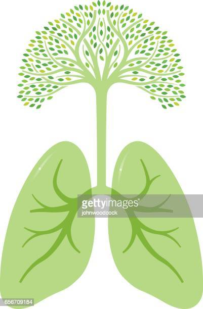 Green tree lungs illustration