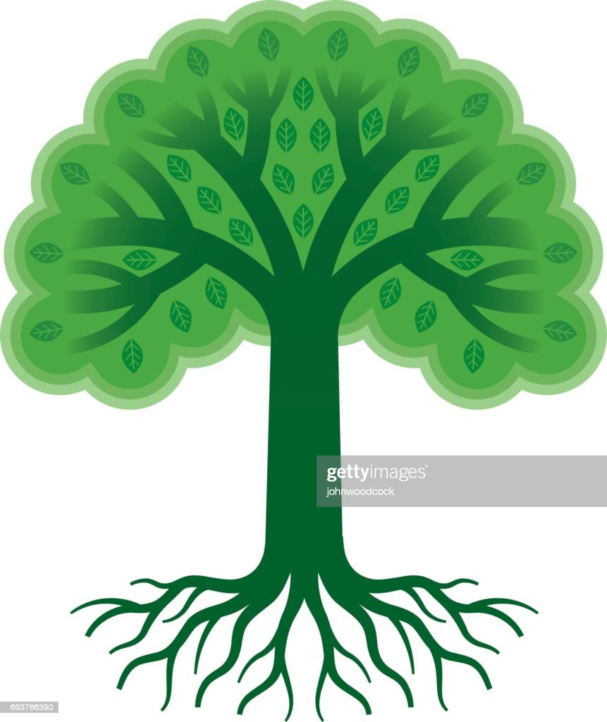 Green tree with roots vector illustration