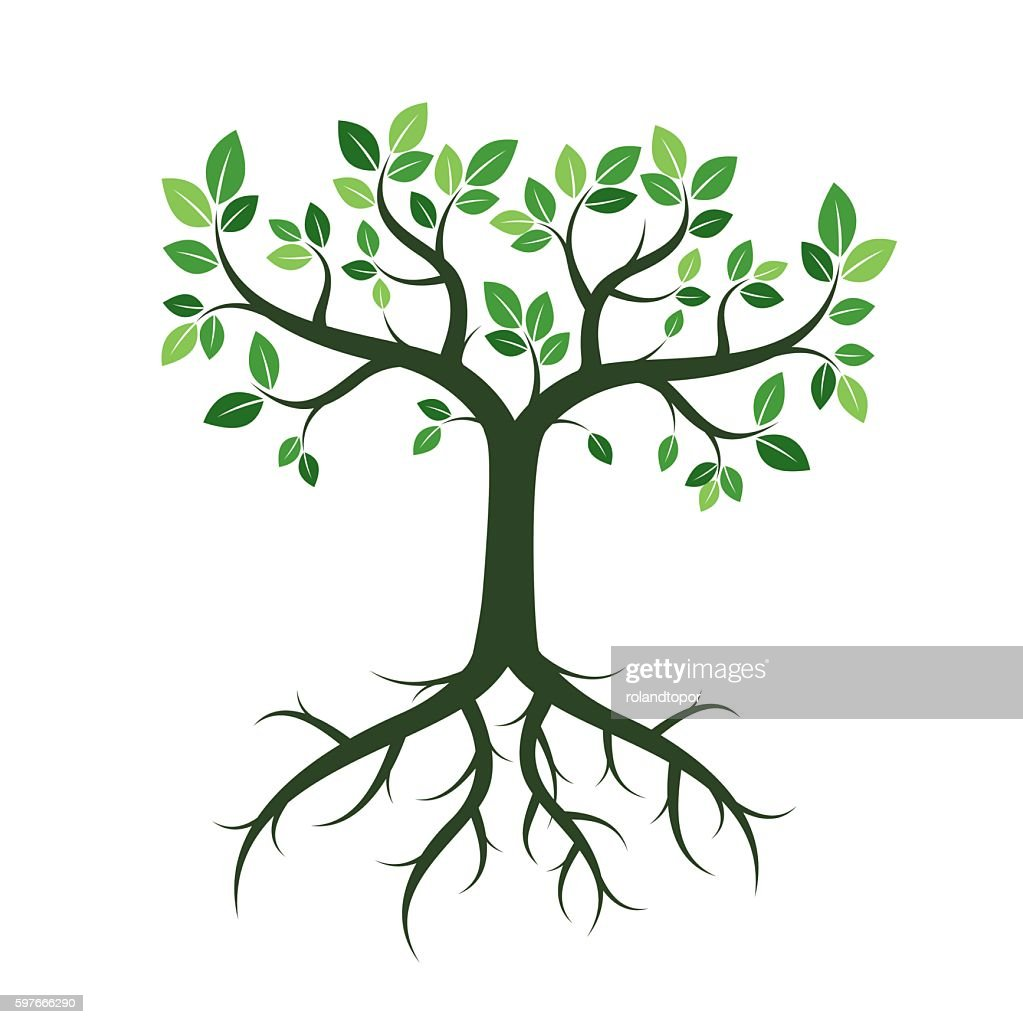 Green Trees. Vector Illustration.
