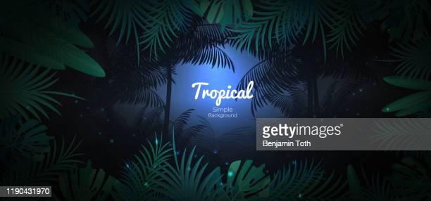 illustrations, cliparts, dessins animés et icônes de fond floral tropical vert dans le fond foncé de scène de jungle - forêt pluviale