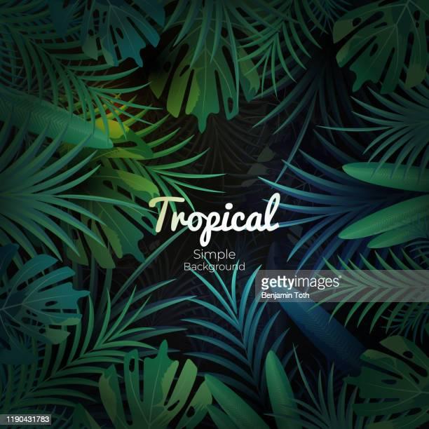 green tropical floral banner on dark background - rainforest stock illustrations