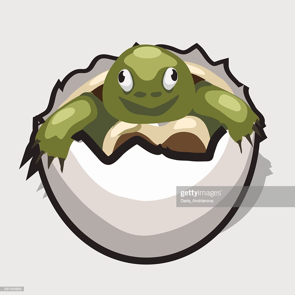 Green turtle is born from egg, cartoon style image