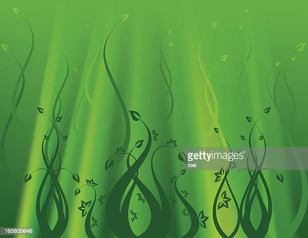 green underwater background