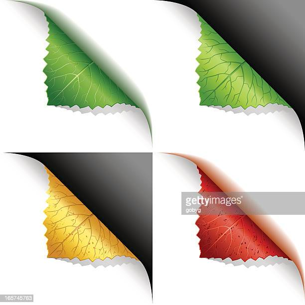 Green, yellow, red leaf corner page curl