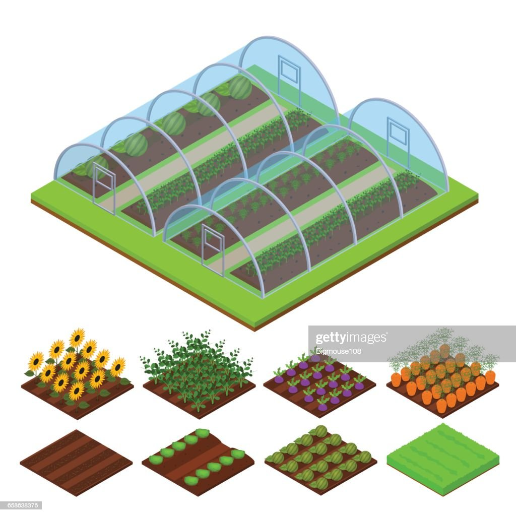 Greenhouse Isometric View. Vector