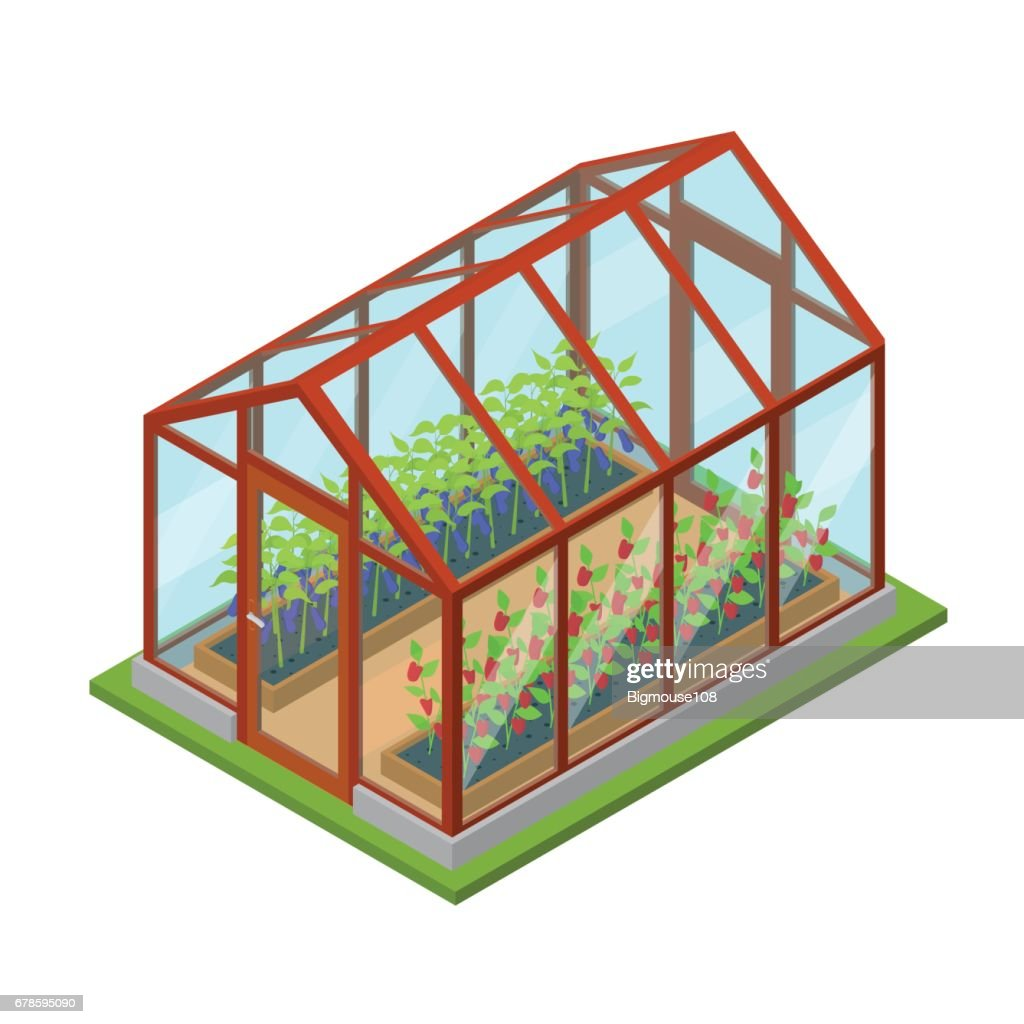 Greenhouse with Flowers and Plants Isometric View. Vector