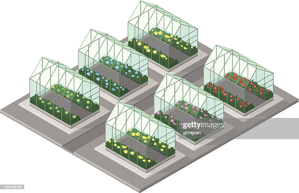 Greenhouse with plants and flowers