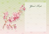 Greetings - Floral design with copy space
