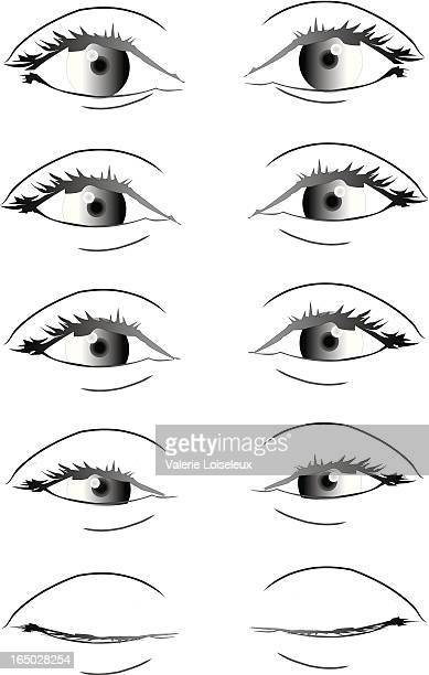 grey eyes - closing stock illustrations, clip art, cartoons, & icons