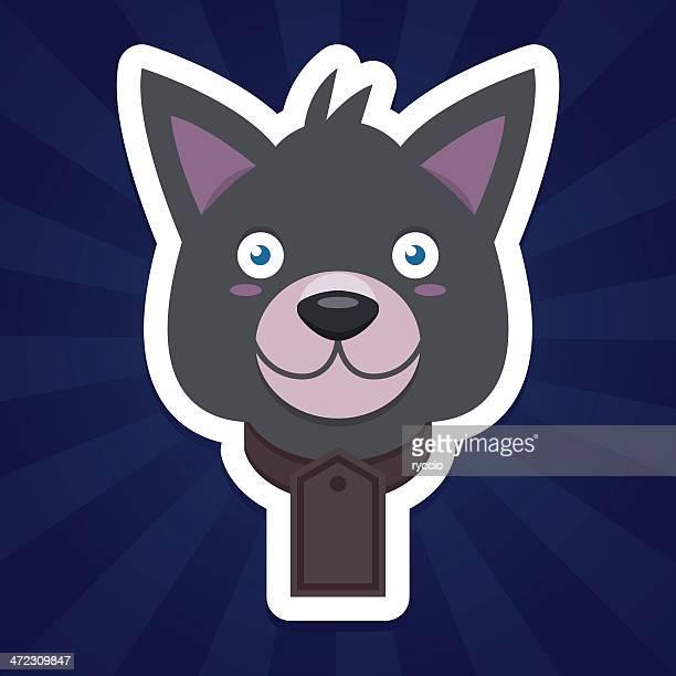 Grey wolf dog