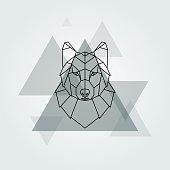 Grey wolf head.