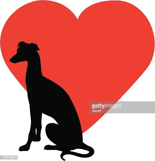 ilustraciones, imágenes clip art, dibujos animados e iconos de stock de greyhound de rescate - galgo
