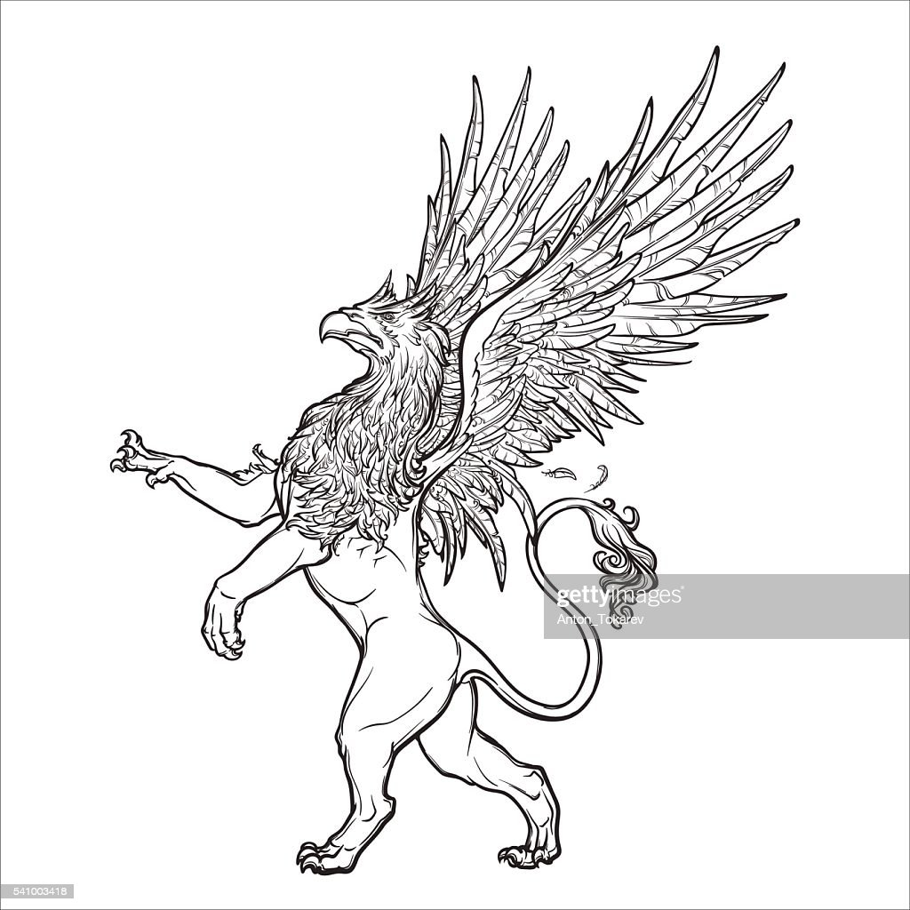 Griffin, griffon, or gryphon on grunge background.