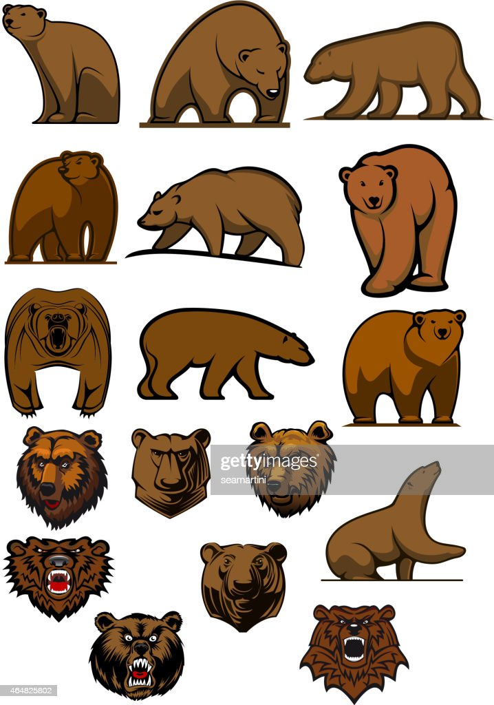 Grizzly and brown bear characters