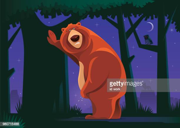 grizzly bear with urinary problem