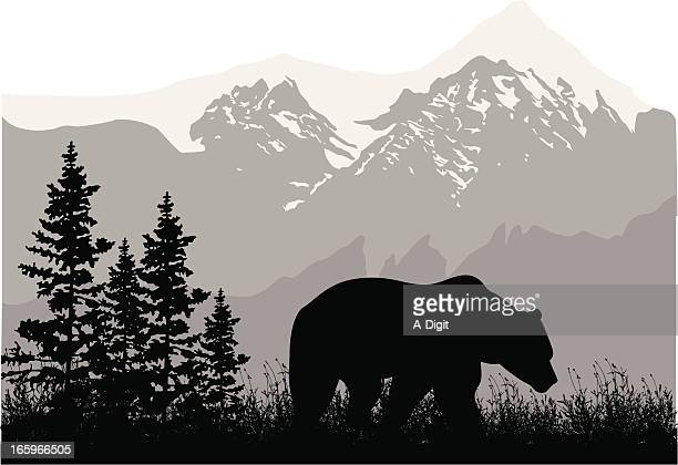grizzly mountains - animal wildlife stock illustrations