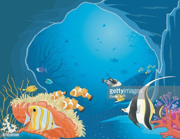grotto under the sea / caverne sous la mer - acanthuridae stock illustrations, clip art, cartoons, & icons
