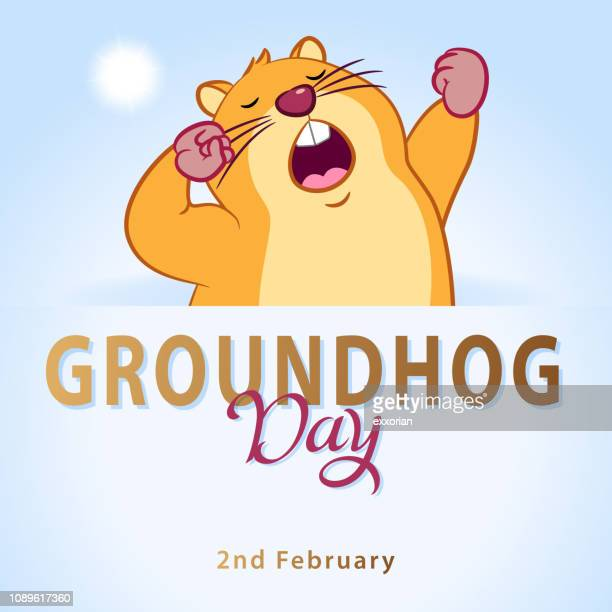 groundhog day marmot waking up - groundhog day stock illustrations