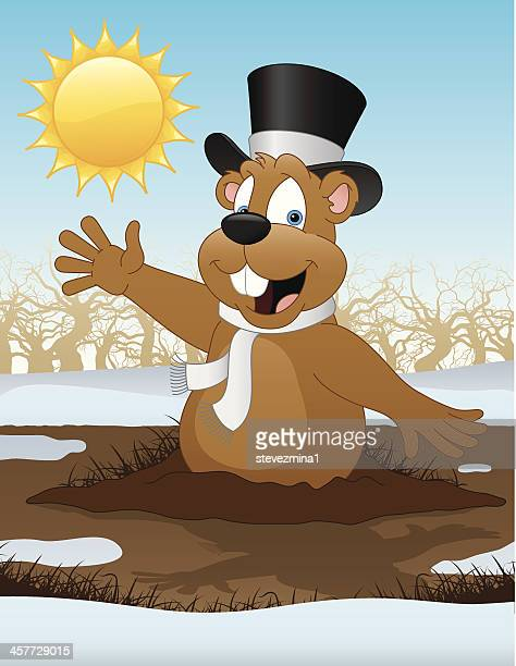 groundhog day - groundhog day stock illustrations