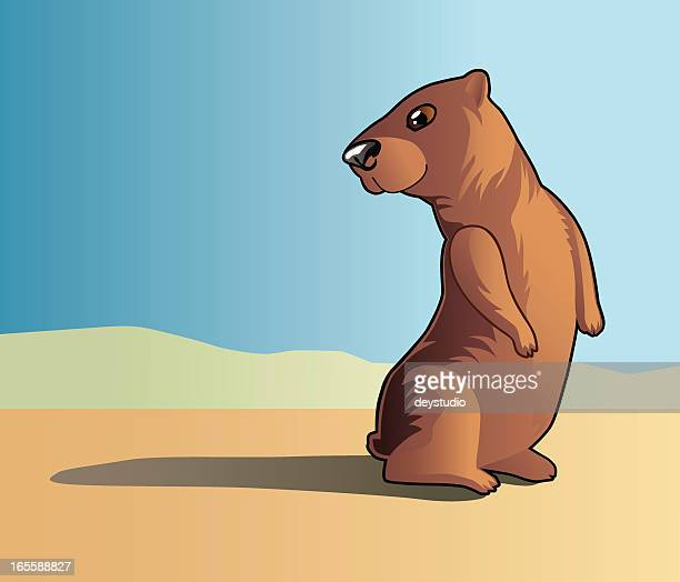 groundhog sees his shadow - groundhog day stock illustrations