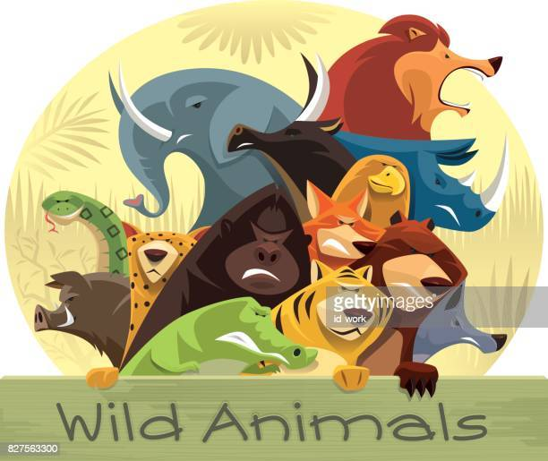 group of angry wild animals