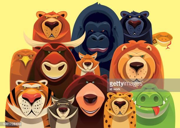 ilustraciones, imágenes clip art, dibujos animados e iconos de stock de grupo de peligrosos animales salvajes reunión - grupo de animales