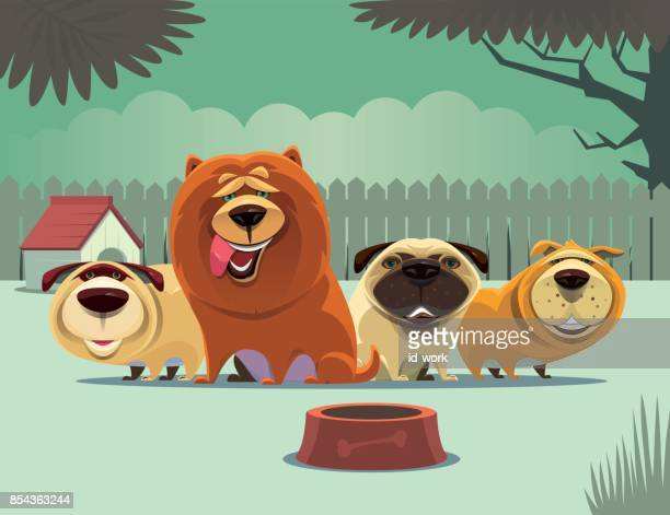 group of dogs waiting for food - dog eating stock illustrations, clip art, cartoons, & icons
