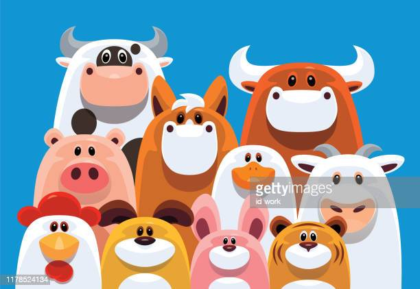 group of farm animals gathering - bull animal stock illustrations