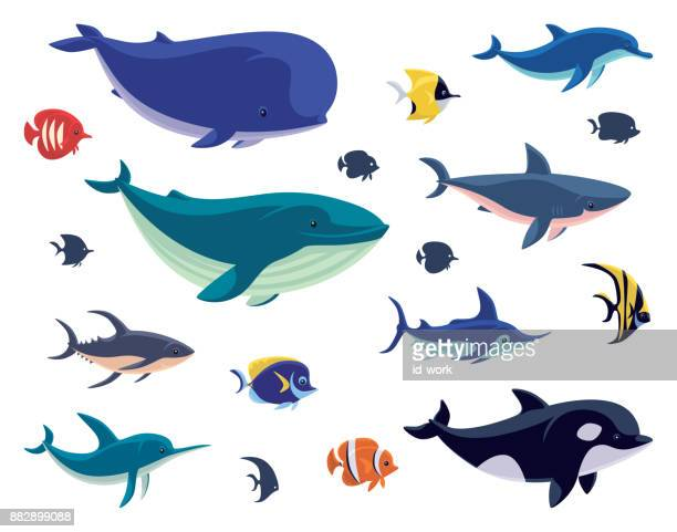 group of sea creatures - animal stock illustrations