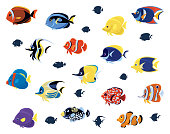 group of tropical fishes