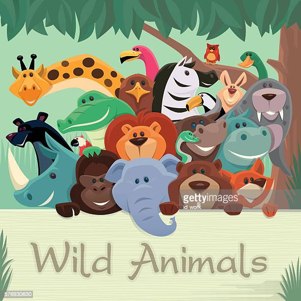 group of wild animals gathering - animal stock illustrations